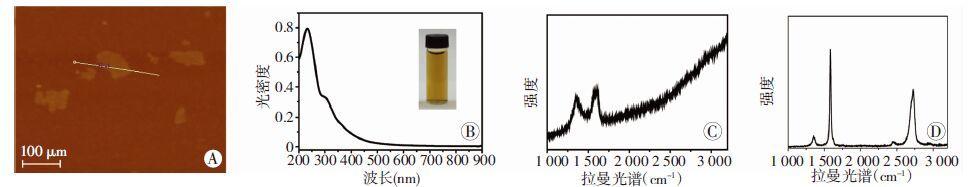 说明制备的氧化石墨烯溶液以单层为